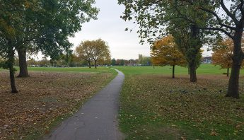 My Streatham Common Things To Do