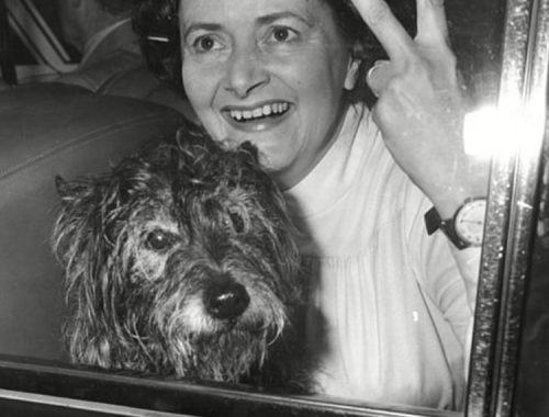 Who was Cynthia Payne