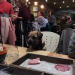 Dog in restaurant in Streatham